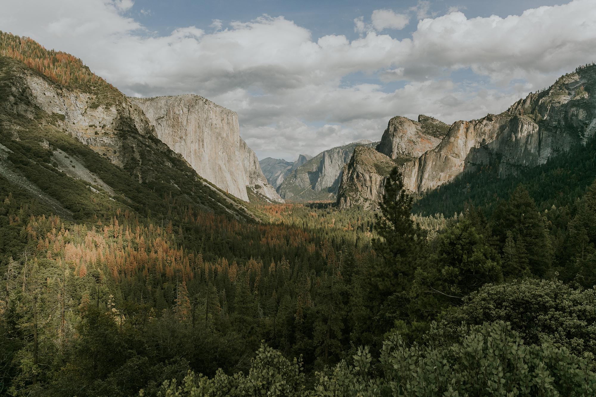 Yosemite Elopement Wedding Half Dome View