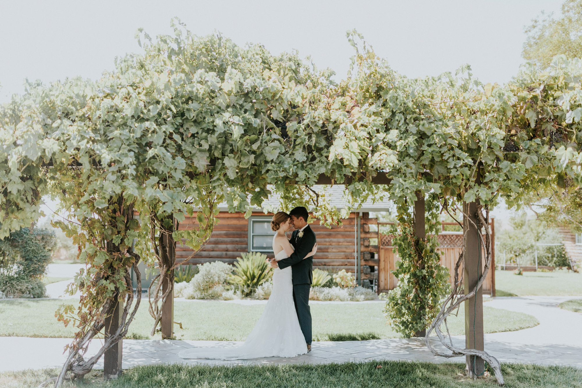 Purple Orchid Livermore Summer Wedding